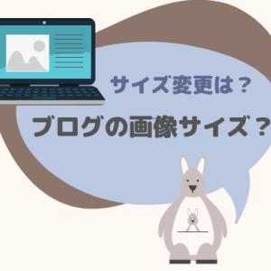 【簡単1分】ブログ画像サイズの確認方法と画像サイズの変更方法
