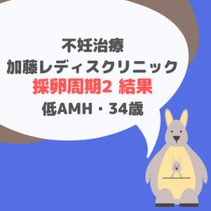 加藤レディスクリニック 採卵周期②結果と今後34歳・低AMH