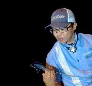 【琉球アジング】2019年ガチュン(メアジ)釣りについて検証結果