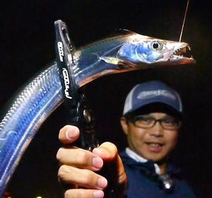 タチウオ釣りで大盛況な場所!