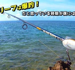 沖縄県南部域の綺麗なリーフで釣りしてみた