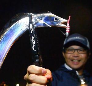 【現実逃避】500円で宿泊できるホテルに宿泊して釣りを満喫計画勃発!
