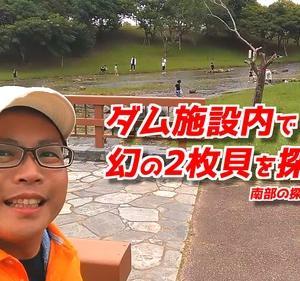 沖縄県でシジミが確実に取れる場所!