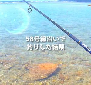 【穴場】国道58号線沿いで釣りしたら意外と穴場だった!名護市での釣りはウハウハだ☆