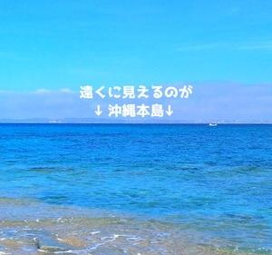 津堅島でタマン狙いからの『ついに!!』