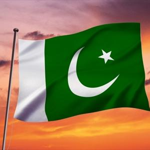逮捕されたパキスタン人「兄の葬儀に行くから保釈してほしい」地裁「OK」2度と戻らず