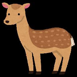 【悲報】奈良公園のシカ、観光客から鹿せんべいを貰えなくなってやせたかなしい姿になる