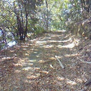 ロードバイクと田舎道