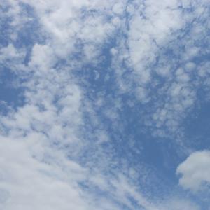 うろこ雲とバターナッツかぼちゃ