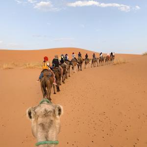 【DAY274・モロッコ】フェズからシェアタクシーでメルズーガへ移動🚖砂漠ツアーに参加🐫