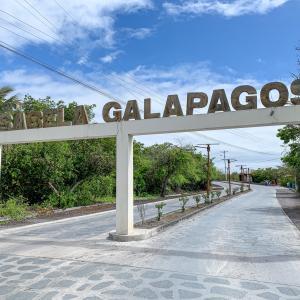 【DAY332・ガラパゴス諸島】サンタクルス島からイサベラ島へ🚢早速、シュノーケリング🐢
