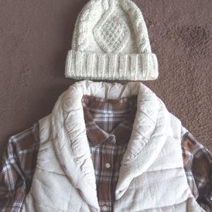 【GU&しまむら】フランネルシャツワンピースと中綿ベストのコーデ!初冬の晴れの日