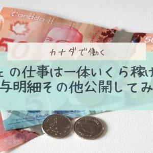 【カナダでワーホリ】カフェで働くと一体いくら稼げる?給与明細公開してやん!+α