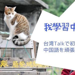 【台湾華語・中国語学習】萬年初心者が台湾Talkオンライン講座を受講してみた