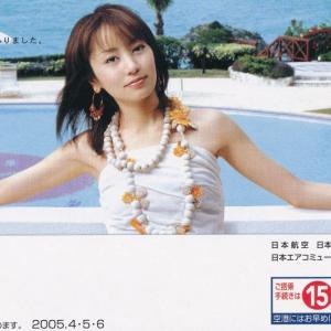 日本航空(JAL)チケットホルダー