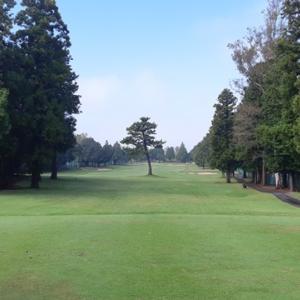 2019年のゴルフラウンド成績 レッスン初めて1年の成果