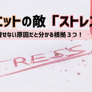 【ダイエット対策】ストレスが多いと痩せるわけない!|根拠3選