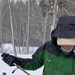 森の探検、冬編
