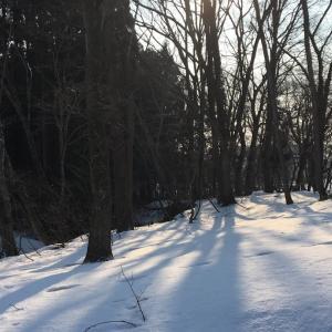 雪わたりの日