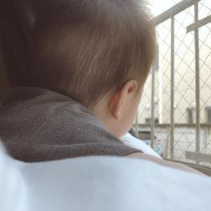 保育園生活と生後7ヶ月児の日課?