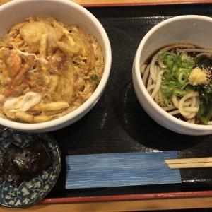 『大阪うどん・そば てんま』シンプルなメニューながらもうまい。うどん・そばの麺にこだわったお店。夜メニューも豊富◎