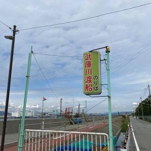 武庫川一文字でサビキとのませ釣り!ときどきショアジギング!