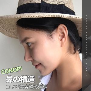 【コノピ】鼻の構造を理解しよう!