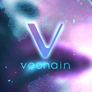 VeChain(VET)がOceanex Institution Grade Custody Solutionを採用した最初の暗号となる