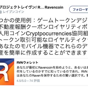 Ravencoin(RVN)は年初来497%の成長!オーバーストックCEOのお気に入りのAltcoinである