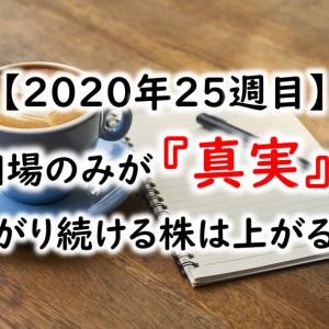 【2020年25週目】相場のみが『真実』!上がり続ける株は上がる!!