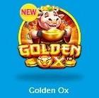 久々のボラティリティ3  勝ちやすいはずなんだけど。。 新ゲーム「ゴールデンオックス」
