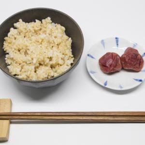 この時期の梅干しと玄米は最強です(アレルギーを吹き飛ばしましょう)