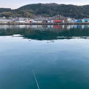 2月10日細島商業港&美々津漁港(耳川)釣行