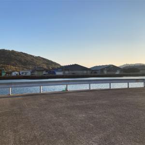 2月19日細島商業港、水ヶ浦公園釣行