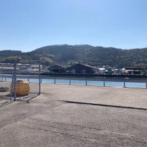 2月20日細島商業港釣行