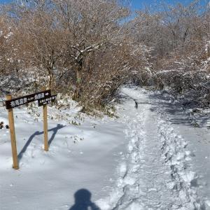 また来た六甲山 牙を剥く雪山