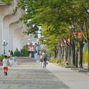 六甲アイランド アイランドセンター駅リバーモール付近を散歩してみた