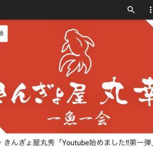 YouTube始めました‼️