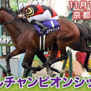 マイルチャンピオンシップ(2019)京都競馬場 芝1600M 予想 穴党