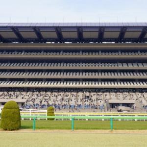 ヴィクトリアマイル(2019)東京競馬場 芝1600M 予想 穴党