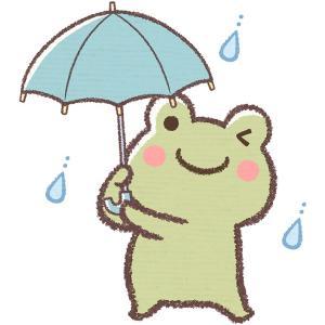 雨の日の過ごし方 暇な人用(忙しい人も)