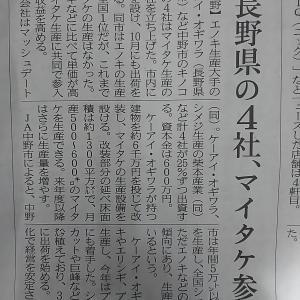 長野県がマイタケの生産に力を入れます