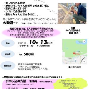 ◎参加犬募集◎うぉ〜きんぐイベント