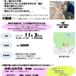 ◎参加犬募集中◎うぉ〜きんぐイベント