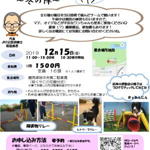 大運動会~冬の陣~参加犬募集中