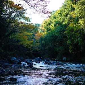 「吾妻峡」静かな渓流と奇岩を撮影。紅葉とキャンプの穴場スポット【埼玉県飯能市】