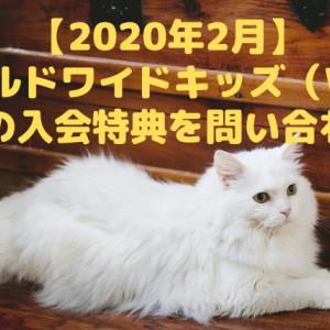 ワールドワイドキッズ(WKE)秘密の入会特典を問い合わせた【2020年2月】