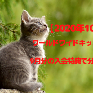 ワールドワイドキッズ~9月入会特典で分かったこと【2020年10月】