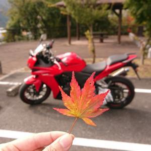 紅葉前のソロツ~リング