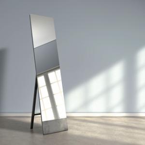 動画は鏡より正直に動きを語る 合気道で鏡によるフォームチェックをしない理由